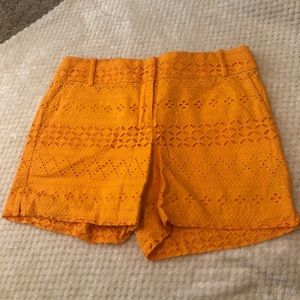 Ann Taylor loft riviera shorts